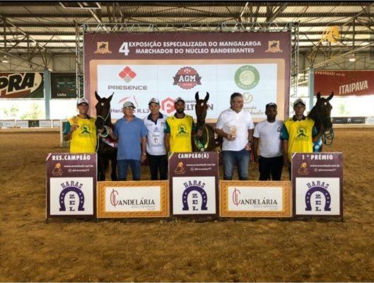 Haras MH se destaca na disputada pista da Expo do Haras Raphaella